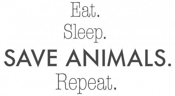 Wandtattoo Spruch Küche vegan Eat Sleep Save animals Repeat Deko